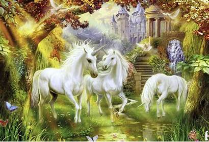 Unicorn Magical Forest Fantasy Background Wallpapers Animals