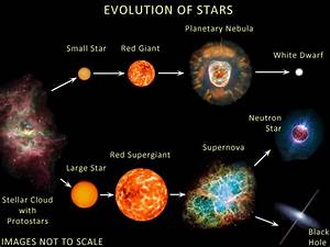 What is the life cycle of a star from birth to death ...