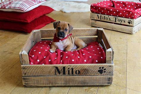 ideas de camas creativas  perros  querras ya mismo