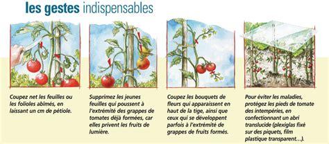 tenue cuisine prolonger et conserver ses tomates permaculture