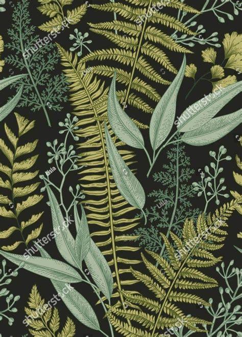 botanical illustrations  premium templates