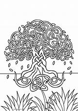Coloring Tree Pages Printable Colouring Cool2bkids Printing Colour Flower Adult Plant Books Popular Template sketch template
