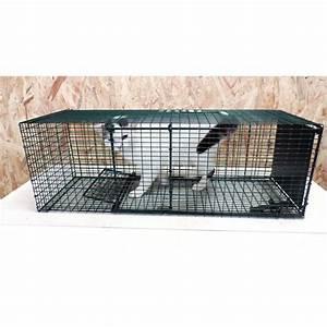 Trappe Pour Chat : cage de capture pour chats la boutique d 39 antoine ~ Dode.kayakingforconservation.com Idées de Décoration