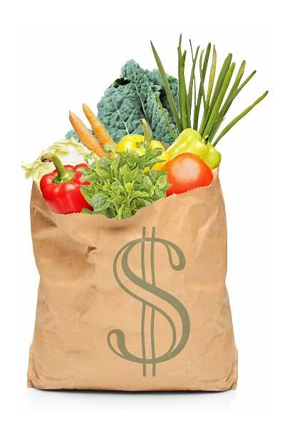Own Vegetables Garden Grow Bag Gardening Grocery