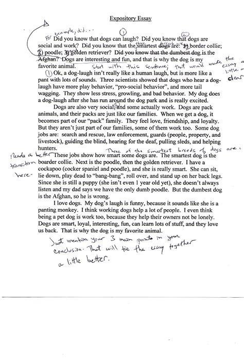 Hatchet Essay by Hatchet Essay Exle