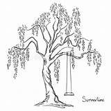 Tree Coloring Swing Pages Adult Trees Printable Drawing Vector Print Colouring Realistic Adults Illustration Swings Celtic Sketch Fa Drawings Spring sketch template
