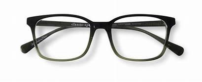 Classicspecs Hoffman Eyeglasses Tortoise Havana Specs Classic