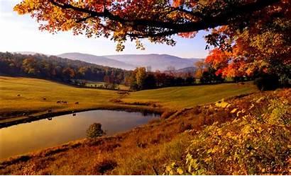 Autumn Desktop Wallpapers Nature