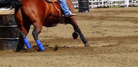 glue ground horse holdin hoof