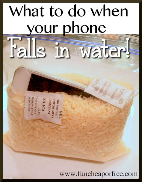 what to do if you drop your iphone in water what to do when you drop your phone or ipod in water