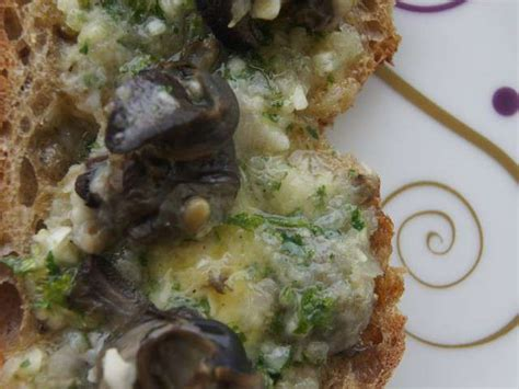 cuisiner les escargots de bourgogne recettes d 39 escargots et bourgogne 2