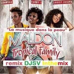 Tropical Family Maldon Remix Djsv Inthemix By Djsv On