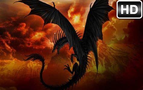 dragon wallpaper hd  tab dragons themes hd wallpapers