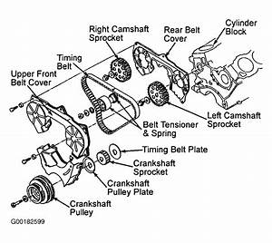 1995 Mercury Villager Serpentine Belt Routing And Timing