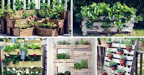 inspiring diy pallet planter ideas homelovr