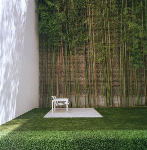 backyard bamboo urban garden with bamboo interior design ideas