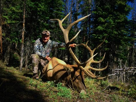 hunting elk wyoming areas area moose river antelope ranch wy guided hunts outfitter bull