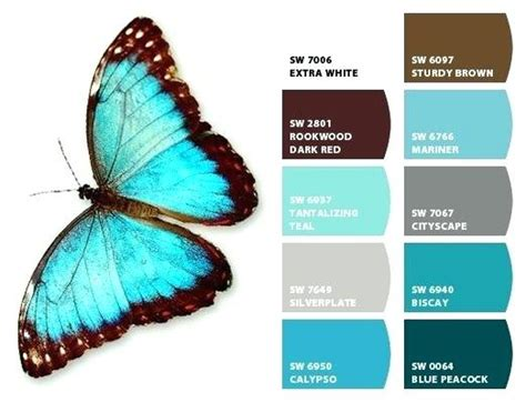 colors that go with turquoise ed ex me
