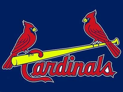Cardinals Louis St Baseball Clip Logos Clipart