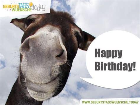 happy birthday und einem lustigen esel
