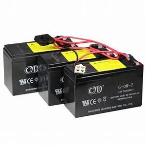 Razor 36v Eco Smart Battery W  Fuse W13114501003