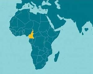 Cameroon | Guttmacher Institute