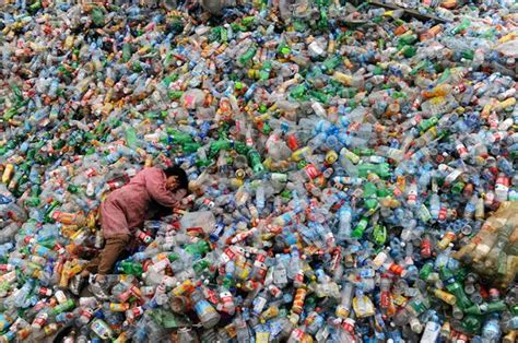 Правда ли что даже раздельно собранный мусор часто сваливают в кучу и сжигают?— 6 answers