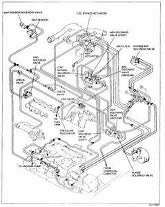I Need A Vacuum Hose Diagram For A 2001 Mazda Millenia