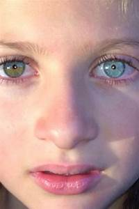1000+ images about heterochromia on Pinterest