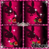 red playboy bunny logo pictures p    blingeecom