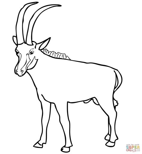 Coloring Top by Springbok Coloring Pages And Print For Free