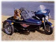 Dog in sidecar with rain cap on. | This is my biker ...