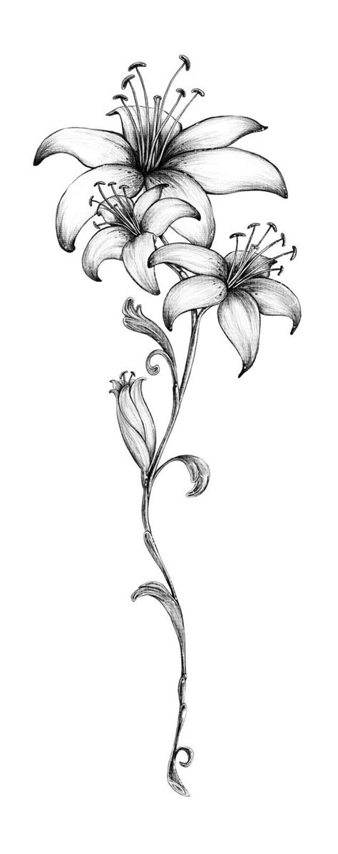 Tribal Tattoo Ideas for Shoulder And Chest | Lily flower tattoos, Lillies tattoo, Tiger lily tattoos