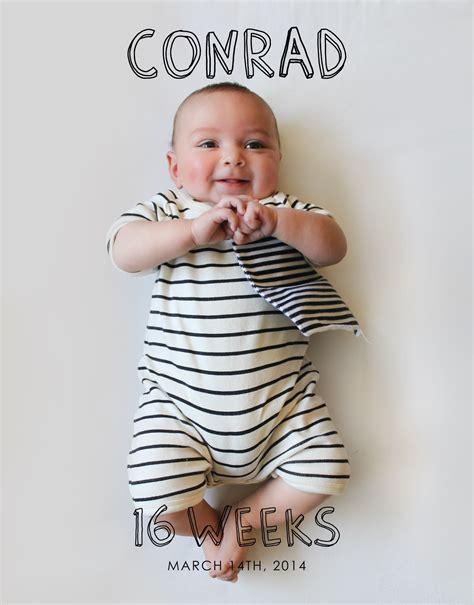 Copy Cat Chic Conrad Weekly 16 Weeks