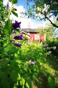 Häuschen Mit Garten : blick auf einen kleinen roten h uschen hinter einem ~ Lizthompson.info Haus und Dekorationen