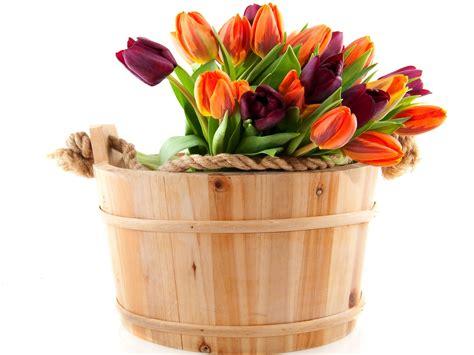 vaso per tulipani sfondi tulipani vaso di fiori fiore mazzo corda kit