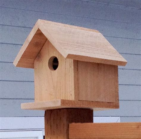 build  cedar birdhouse   ana white