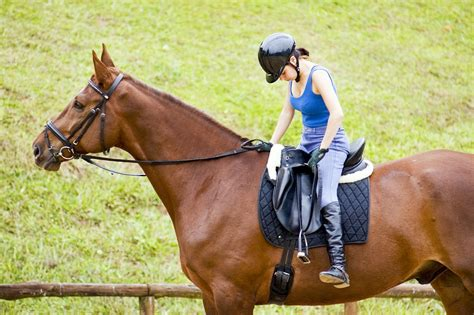 horse riding exercises stirrups beginner equestrian today