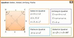 fläche eines kreises berechnen rechner viereck rechteck trapez formel