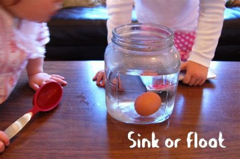 sink or float experiment science experiment the floating egg