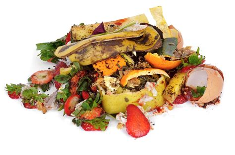 cuisine domactis food waste is an environmental problem at the edge us