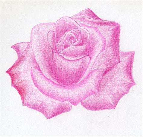 rose cartoon drawing   clip art