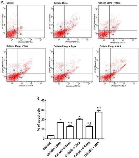 effect  colistin  hk  cell apoptosis determined  facs  scientific diagram