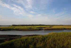 Marsh Scene Charleston Sc Photograph by Susanne Van Hulst