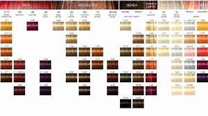 Hair Color Chart Schwarzkopf Color Color Wheel Art