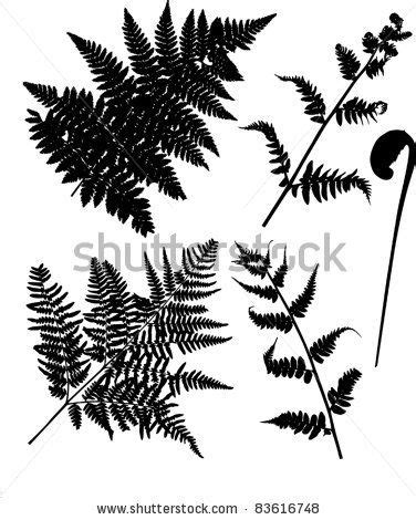 illustration with set of fern silhouettes isolated on