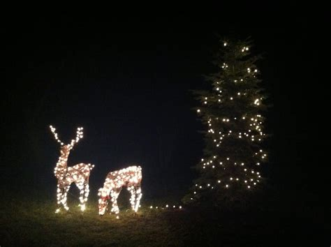 fix christmas lights with the pull of a trigger not a gun