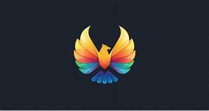 Logos Colorful Coloridos Eagle Trade Bratus Inspiration