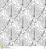 Coloring Tropical Adult Leaves Summer Pattern Vector Tropicale Colorare Interior Foglie Seamless Modello Cuciture Adulta Vettore Senza Libro Delle Pagina sketch template