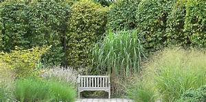 Sichtschutz Pflanzen Blühend : sichtschutz pflanzen hochwachsend s ulenformen verwenden ~ Markanthonyermac.com Haus und Dekorationen